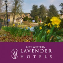 Lavender Hotels Group